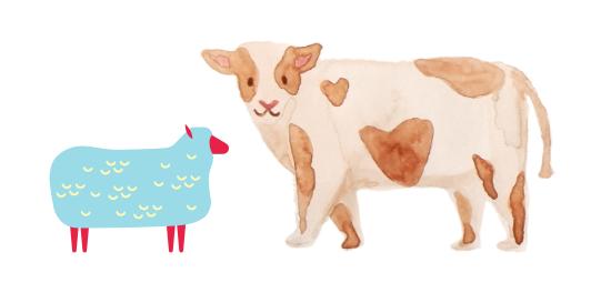 Sheepskins & Cowhides